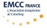Fabricia louis coaching professionnel angers emcc france 5